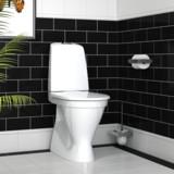 Gustavsberg Nautic 1546 Hygienic Flush M1 2017.jpg